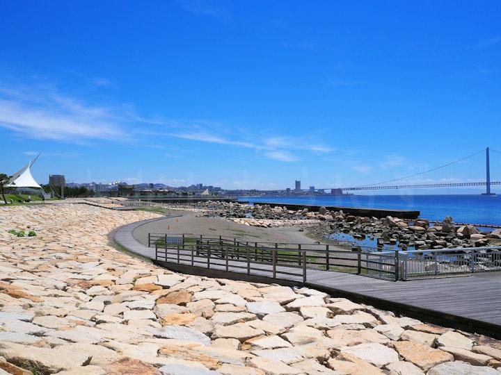 大蔵海岸公園