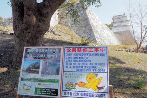 明石公園(明石城)西側の石垣周りの樹木が伐採されて超すっきり(し過ぎかも?)