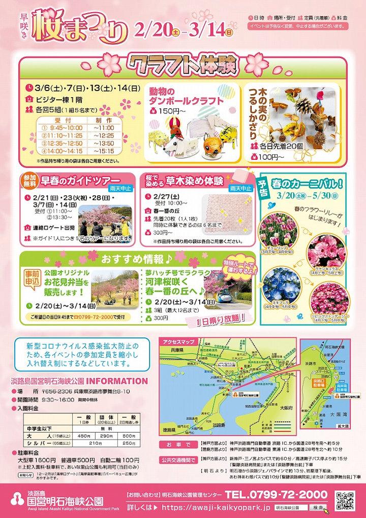 早咲き桜まつりイベント
