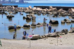大蔵海岸公園に自然観察センター&自然観察ゾーン(タイドプール)がオープンしました