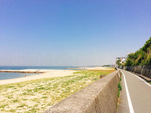 海岸線のサイクリングロード