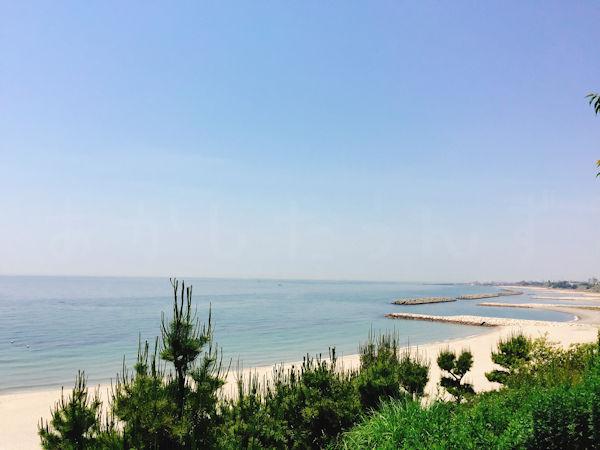八木遺跡公園からの眺望