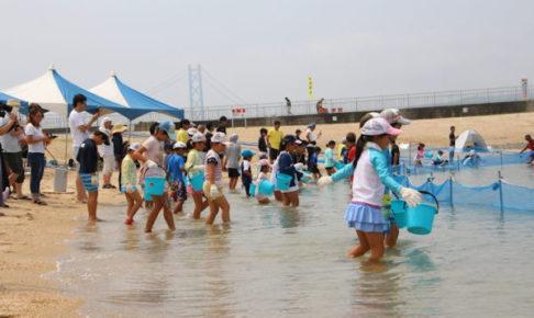 大蔵海岸で魚のつかみどりイベント