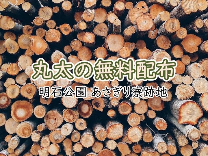 明石公園で丸太の無料配布