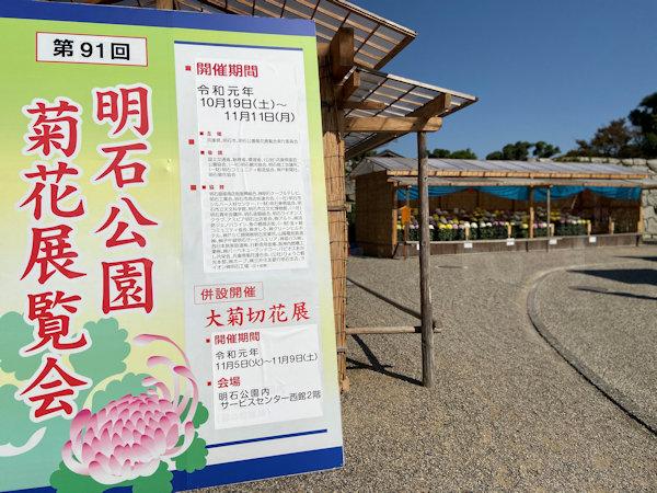 第91回 明石公園菊花展覧会