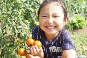 「明石太寺体験ファーム」でプチ農業体験・農園見学会