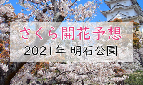 2021年明石公園の桜開花予想