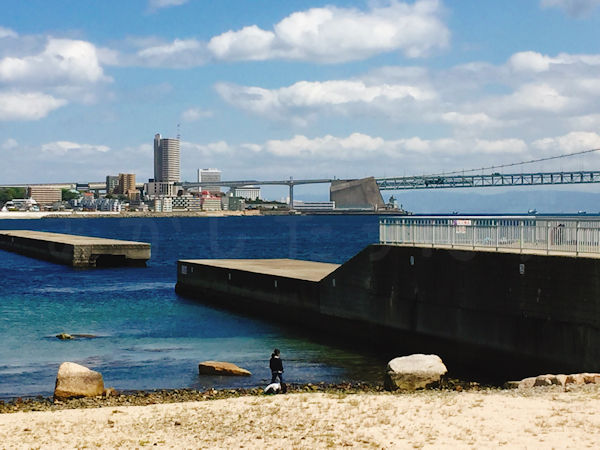 大蔵海岸海水浴場側に防波堤