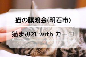猫まみれ with カーロ