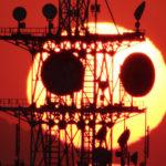 今年の「夕焼けパンダ」はオンライン生中継で楽しもう!10月12日