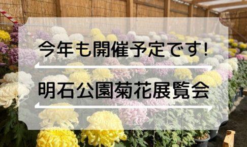 第92回 明石公園菊花展覧会