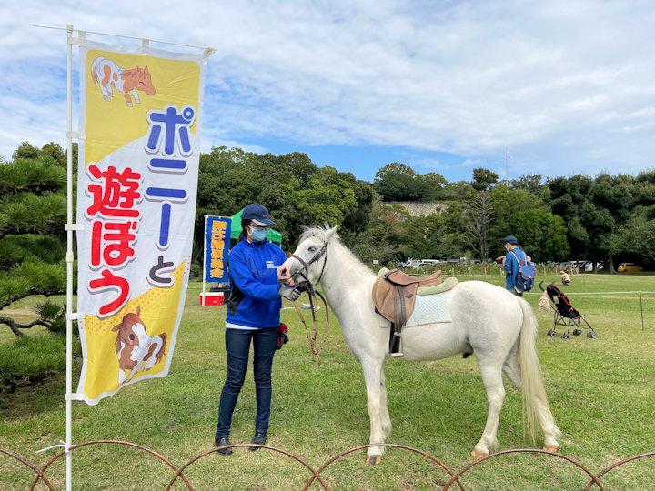 明石公園でポニー乗馬体験