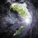 明石公園にパワースポット?!「こもれびの小径」「青天を仰ぐ木」が公開されました