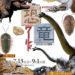 「恐竜ワールド~生物進化の大冒険~」明石市立文化博物館の夏季特別展 7/13~